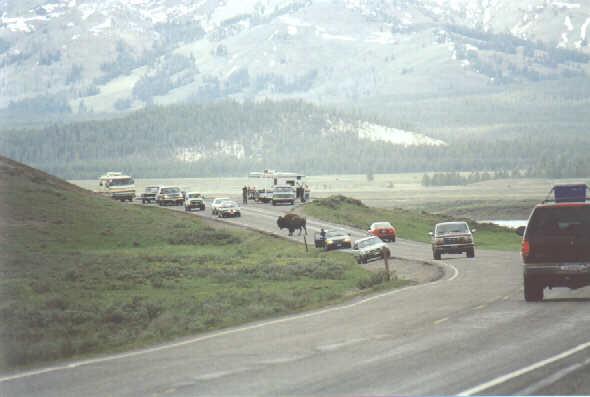 1998_054
